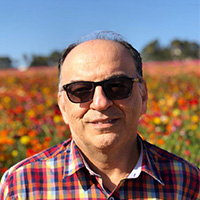 دکتر محمد حسین دقیقی